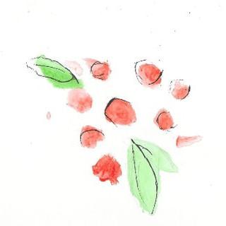 Apple & Berries