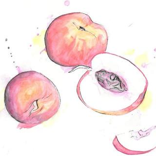 Peach Watercolour