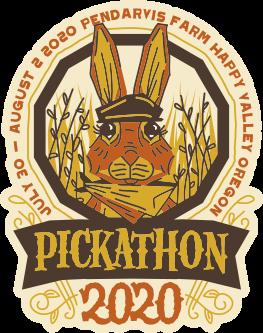 Online Music Festival: Pickathon 2020