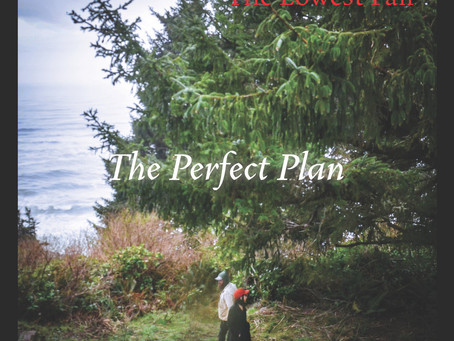 Album Review - The Perfect Plan - The Lowest Pair - 2020