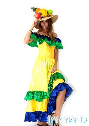 Brazilian Fruit Lady