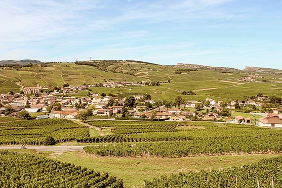 Vins de Bourgogne Pouilly Fuissé