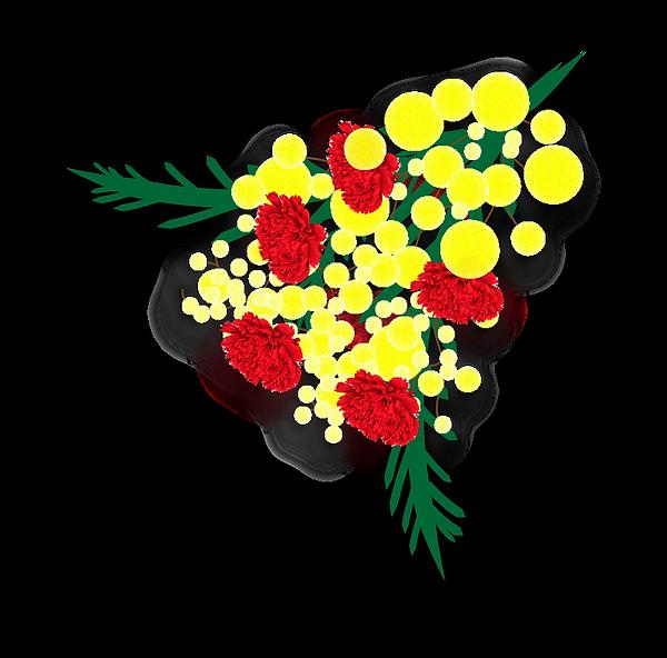 Bouquet du Conscrit Oeillet et mimosas
