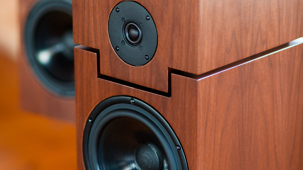theFusion Stand-Mount Speakers