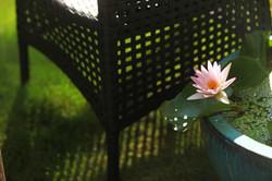 綠合椅簍空編織