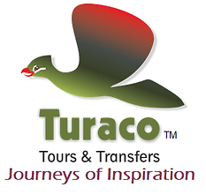Turaco Logo with slogan.png