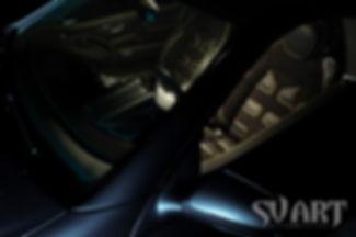 SL кожаный салон.jpg