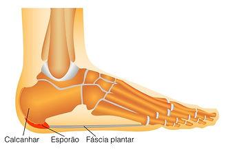 Reflexologia Podal para dores nos pés, pernas e equilíbrio de todo corpo.