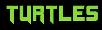 Ninja Turtle Theme Party