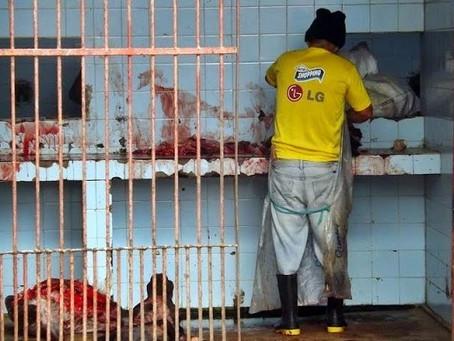 Matadouro Público é interditado em Taquaritinga do Norte