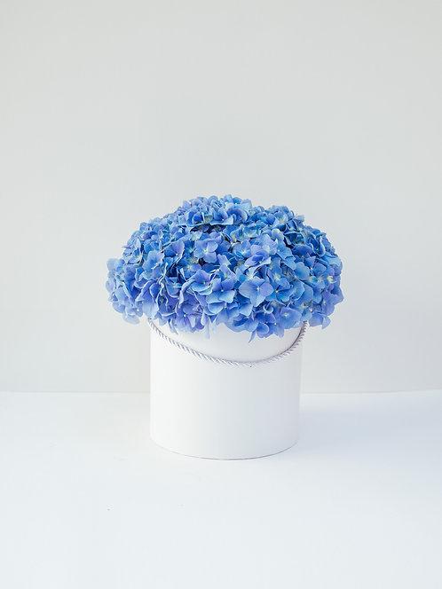 Flower Box dla Koleżanki