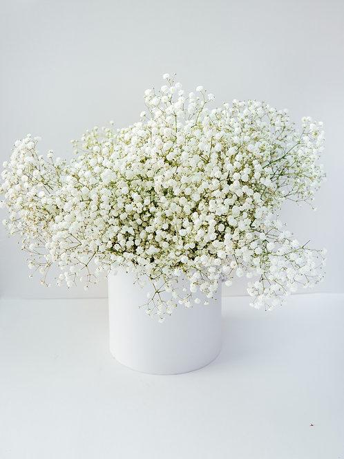 Flower Box (Chmura szczęścia)