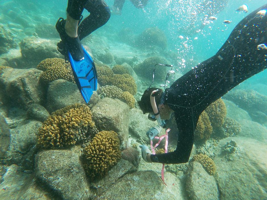 mexico underswater.jpg
