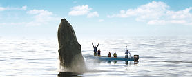 Whale Ecology