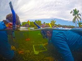 Research Underwater