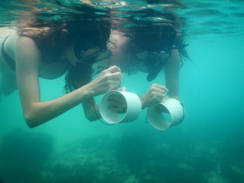 Underwater investigations