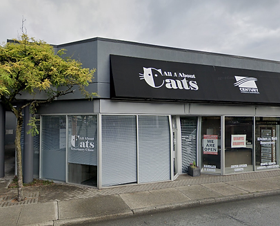 All About Cats - Exterior.png