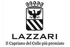 49_1_Logo Lazzari Q.png