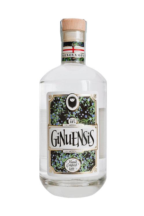 GIN GINUENSIS 70CL