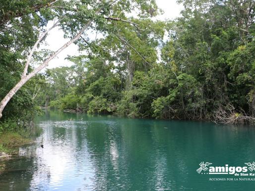 Organizaciones suman esfuerzos hacia un manejo integrado de los recursos hídricos en Quintana Roo