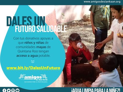Amigos de Sian Ka'an Invita a Participar en Campaña para Llevar Agua Limpia a Comunidades Mayas