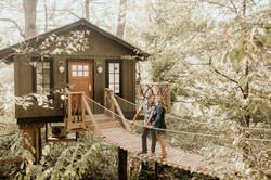 Asheville Treehouse- The Nest
