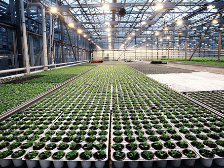 """THE """"PRIVATE PLACEMENT MARKETS"""" TO GROW ITS AGRIBUSINESS FOOTPRINT IN 2020 AND 2021."""
