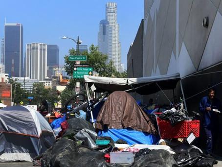 """Steve Muehler - Plan 5 for California: Address the """"Homeless Problems"""" in California."""
