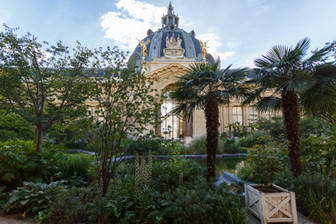 Magique-Studio-Paris-Le-Petit-Palais-Par