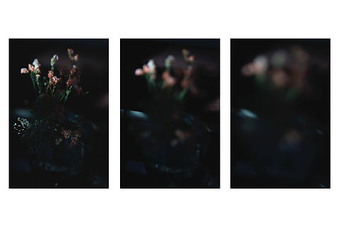 4-Afternoon flowers.jpg
