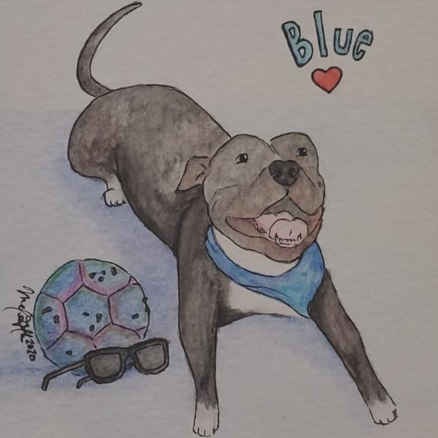 Blue Commission