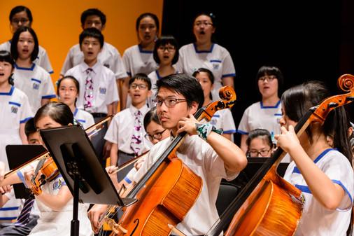 Jackie Choi, Cello