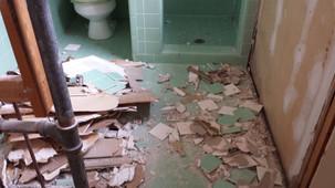 Demo of the turquoise master bathroom. Copyright 2015 Marla Baxter Sanderson - SockOnARooster.com