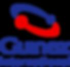 logotipo_guinez.png