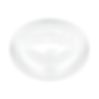 ZAM_Website - Client_Logos (1000x1000px)