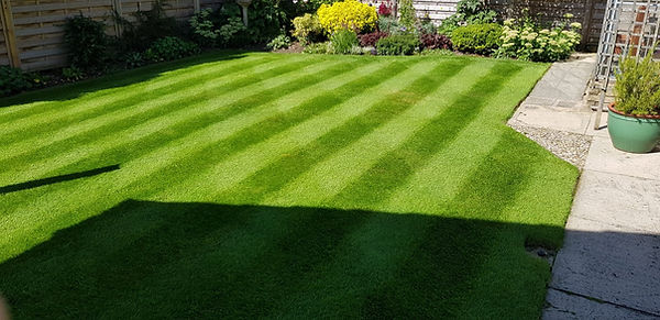 Lawn Mowing, Grass Cutting. Wetherby, Harrogate, Knaresborough