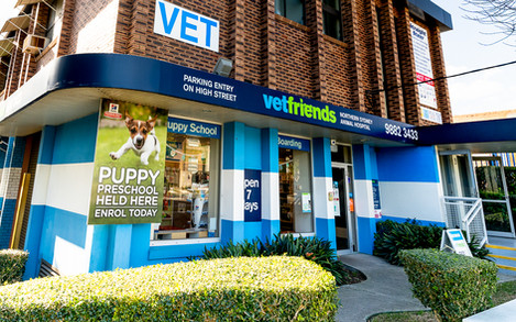 Outside-photo-of-Vetfriends-Chatswood