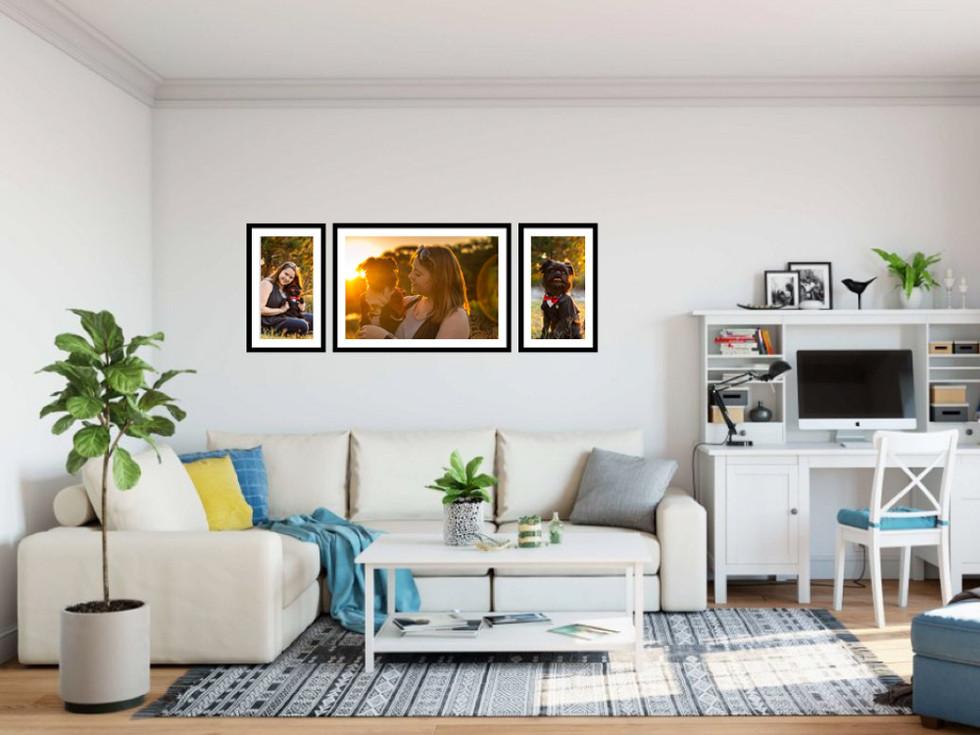 Dog-Portraits-Framed-on-Wall