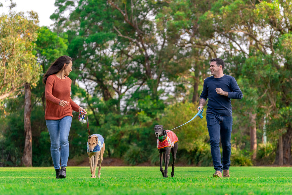 Engagement-photo-with-dogs.jpg