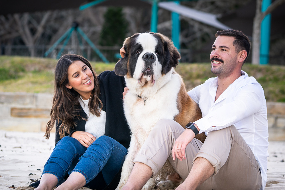 Saint-bernard-dog-with-family