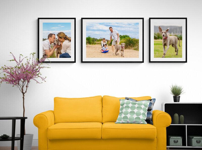 Modern_living_room_with_comfy_sofa.jpg