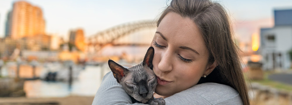 Sphynx-Naked-Cat-Sydney-Harbour-Bridge.j