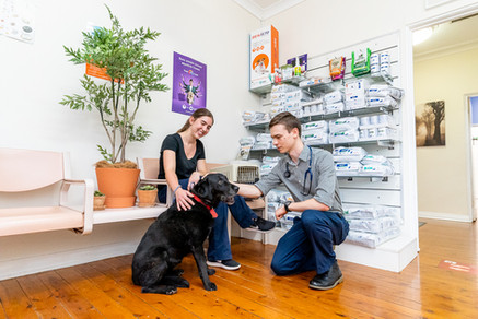 Glenhaven-Veterinary-Hospital-staff-photo