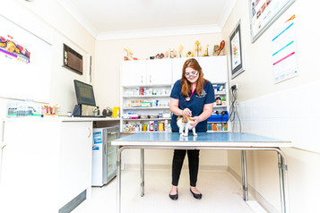 Winston-Hills-Vet-Clinic-Photo
