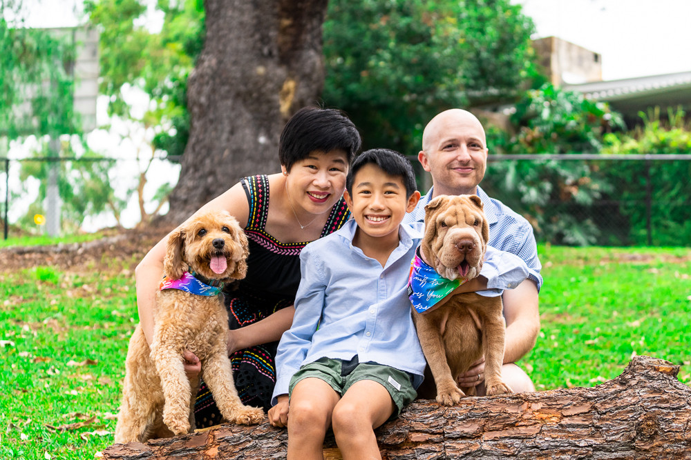 Portrait-of-family-kids-and-their-dogs