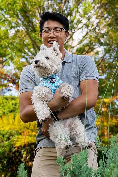 Dog-photographer-sydney.jpg