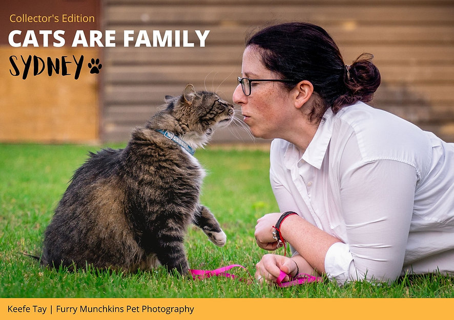 Cats are Family Sydney Book Cover .jpg