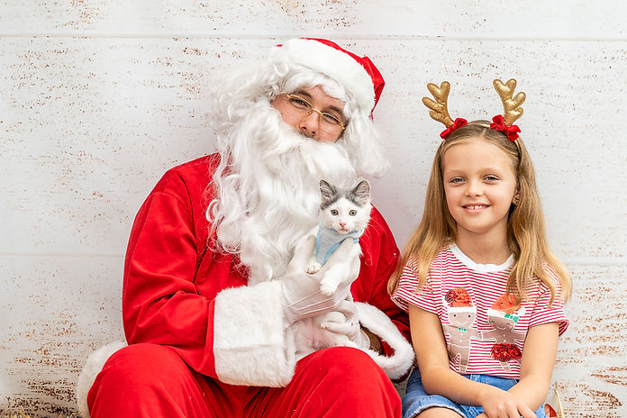 Cat and kid portrait with Santa during Christmas in Lane Cove