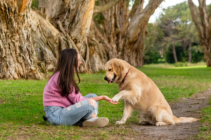 Dog-Portrait-with-owner-in-Sydney-Park