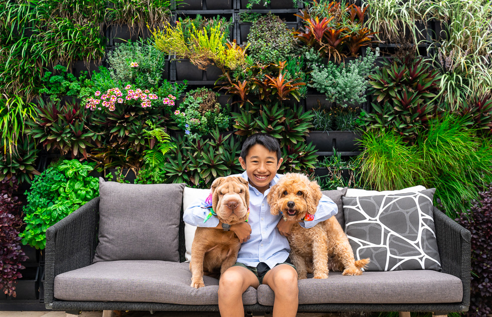 Boy-with-his-two-dogs